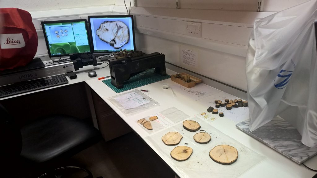 Dendrochronology Room